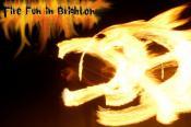 Fire Fun In Brighton